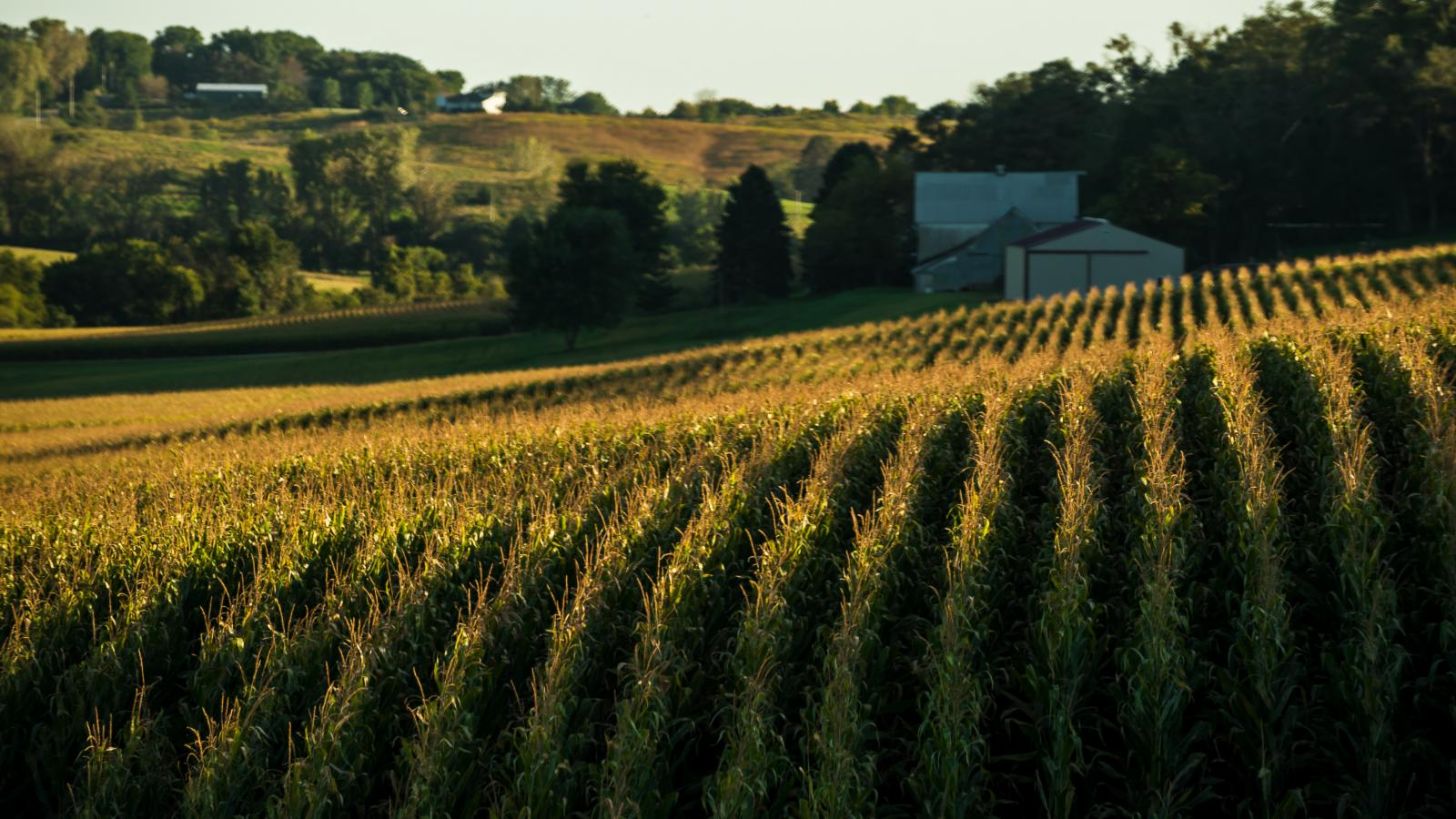 Nebraska farm land